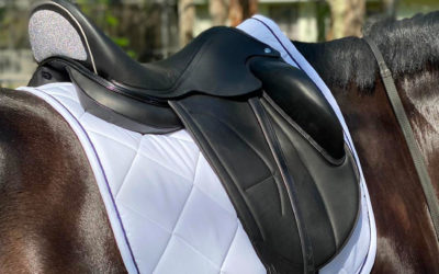La selle de dressage d'Arion HST